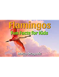 Flamingos: Fun Facts for Kids, Picture Books for Kids, Amazing Images and Interesting Facts About Flamingos!