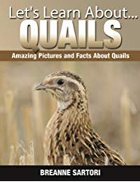 Quails: Amazing Picture and Facts About Quails (Let's Learn About)