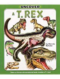 Uncover a T. Rex: Take a Three Dimensional Look Inside a T. Rex