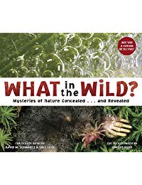 What in the Wild?: Mysteries of Nature Concealed and Revealed