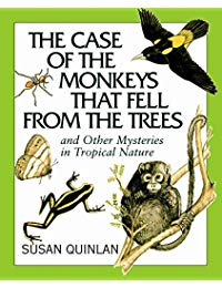 Case of the Monkeys That Fell from the Trees, The