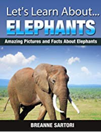 Elephants (Let's Learn About)