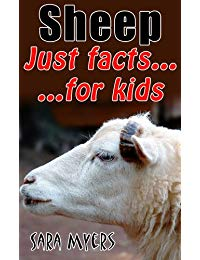 Sheep : Just Facts For Kids