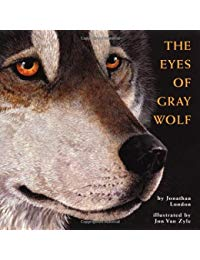 The Eyes of the Gray Wolf