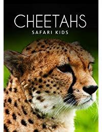 Cheetahs (Safari Kids)