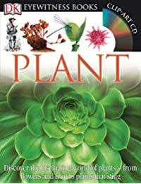 Eyewitness Plant