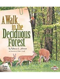 Walk In The Deciduous Forest, A
